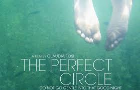the-perfect-circle